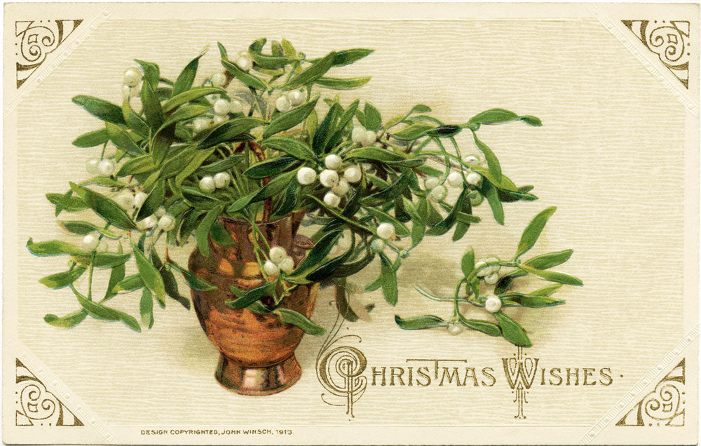 Mistletoe / The Origins of 5 Christmas Traditions