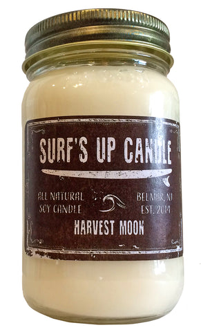 surfs up candle harvest moon soy candle