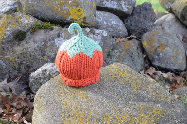 Pumpkin Chunky Harvest Hat
