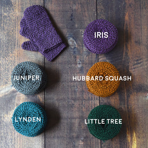 Counting Ridges Mitten Kit
