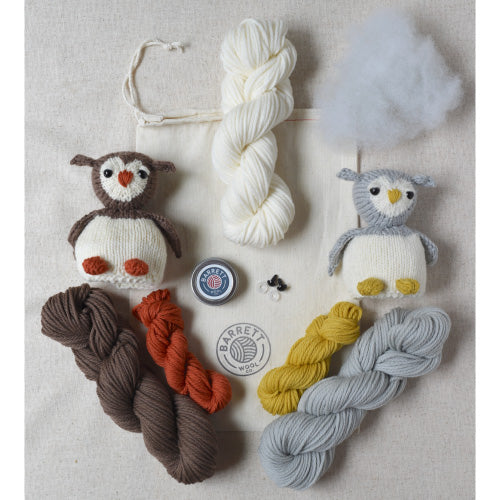 Egg to Owl Reversible Toy Kit