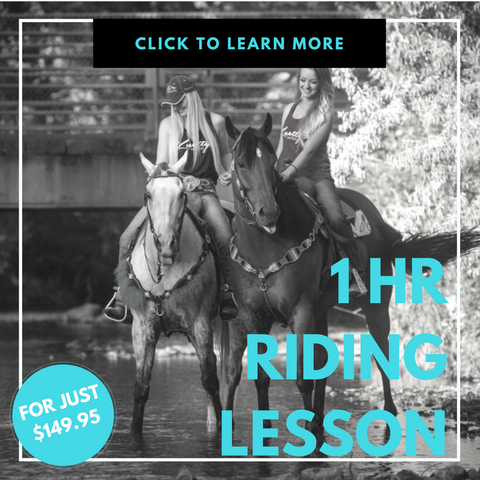 ONE HOUR RIDING LESSON AT THE RANCH