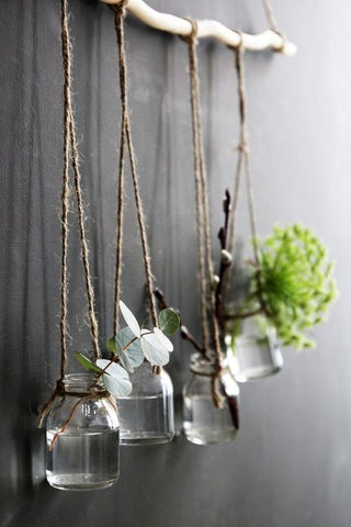 Modern Rustic Hanging Succulents