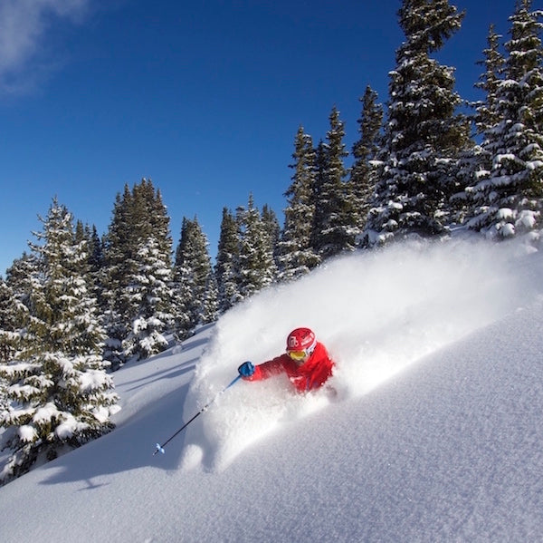 how to ski powder