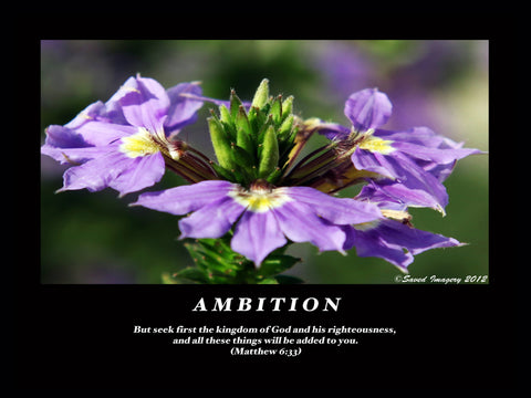 "Inspirational Photo ""Ambition"""
