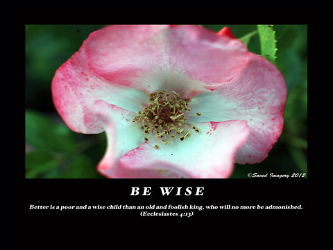 "Inspirational Photo ""Be Wise"""
