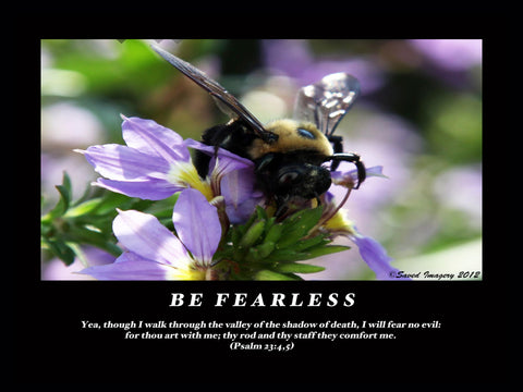 "Inspirational Photo ""Be Fearless"""