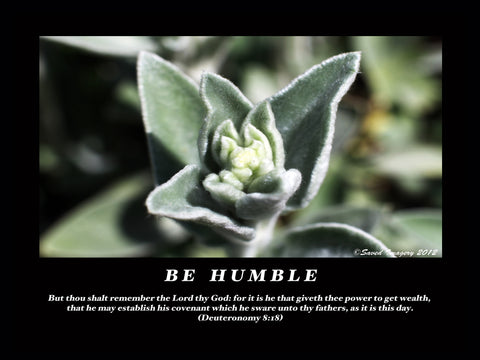 "Inspirational Photo ""Be Humble"""