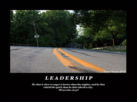 "Inspirational Photo ""Leadership"""
