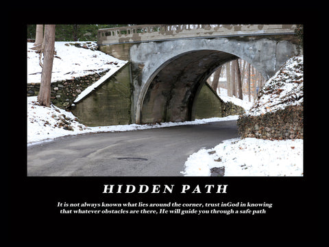 "Inspirational Photo ""Hidden Path"""