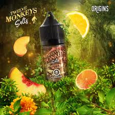 12 Monkeys  - Mint Puris 30ml NicSalt