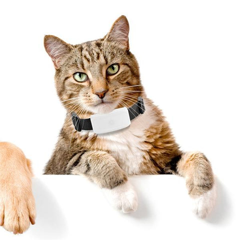 Waterproof GPS Tracker Collar - Cats Love Life