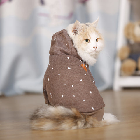 Cat Hoodies Sweater For Winter - Cats Love Life