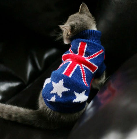 Canadian Hairless Cat Sweater In Nine Colors Cats Love Life