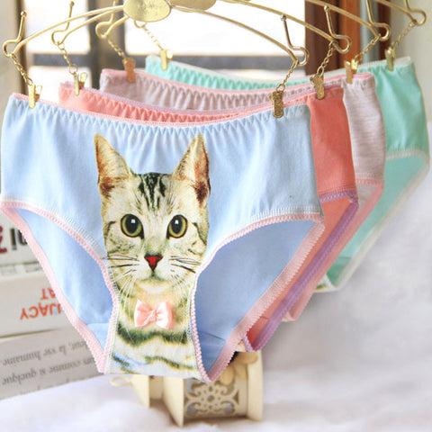 Cotton Cat Underwear In Many Colors And Sizes - Cats Love Life