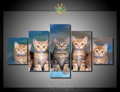 Five Cat 5 Pieces/set Print on Canvas Framed Or Not Framed - Cats Love Life