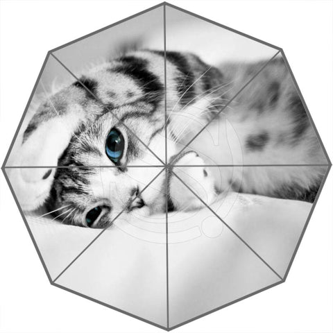 So Many Cute Cats Or Custom Foldable Umbrellas - Cats Love Life