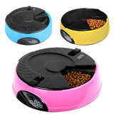 Automatic And Digital Cat Feeder