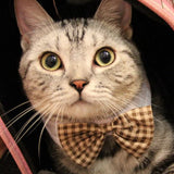 Cat Bow Tie And Collar - Cats Love Life