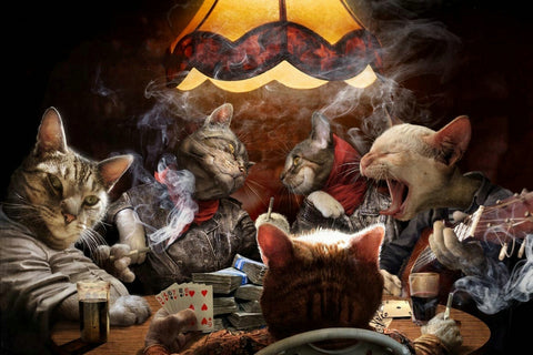 Cats Playing Poker Silk Fabric Canvas Print - Cats Love Life