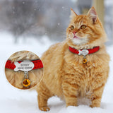 Customized Engraved Cat Collar - Cats Love Life