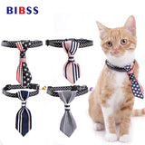 Red White And Blue Cat Collar Tie And Many Other Patterns - Cats Love Life
