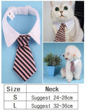 Tie With White Shirt Cat Collar - Cats Love Life