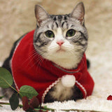 Cute Christmas Cat Hat And Neckerchief - Cats Love Life