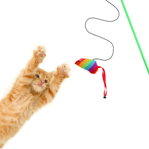 Rainbow Mouse Interactive Cat Toy - Cats Love Life