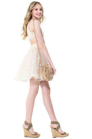 Josie Cut out Lace Tulle Dress