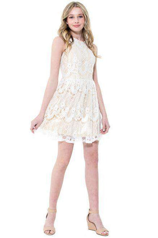 Sasha Cami Skater Dress