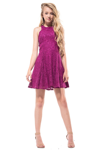 Janine Crochet Lace Fitted Dress