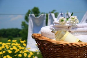 FRESH LINEN --SCENT OF THE MONTH--$1 OFF