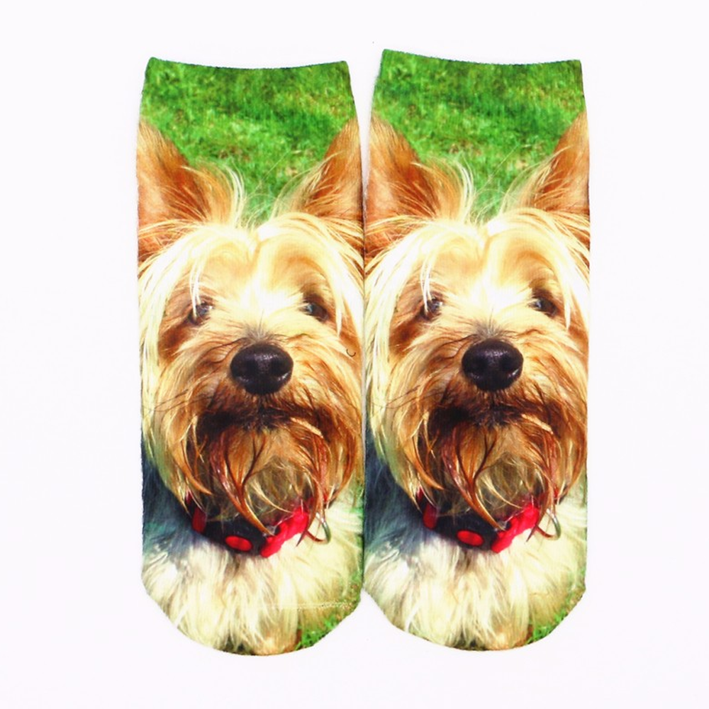 3D Sock Funny Yorkie Cartoon Animal Socks Unisex