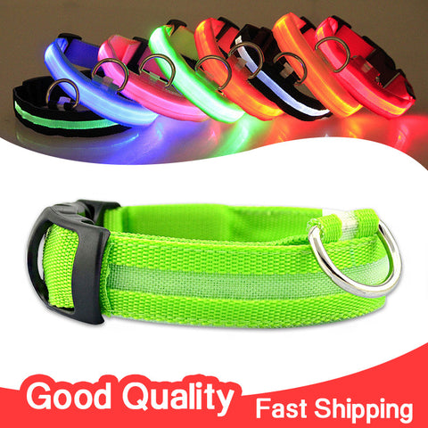 Glow LED Dog Flashing Light Up Nylon Collar Night Safety