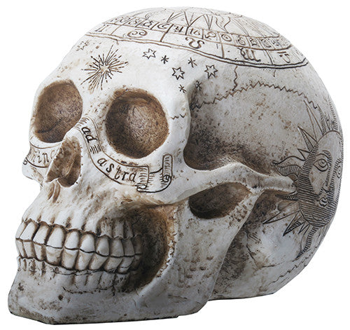 Astrological Skull With Sun on Top