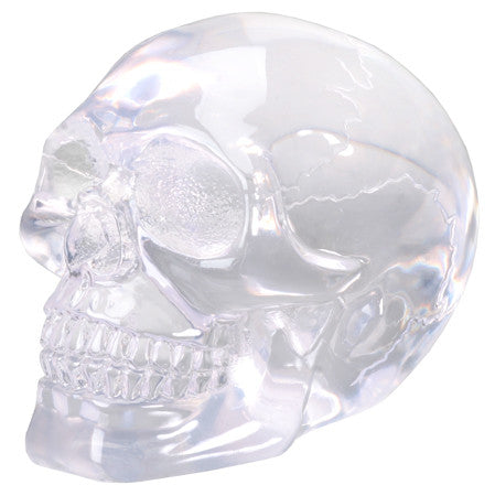 SMALL TRANSLUCENT SKULL