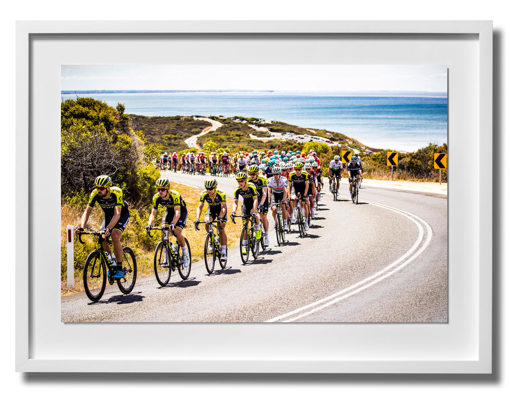 Australia Print 14 - Cadel Evans Great Ocean Road Race 2019