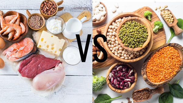 Meat or Plant-Based Proteins! Which is best?