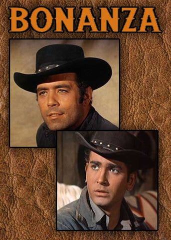 Bonanza Ponderosa Adam Cartwright 4X Buffalo Fur Stetson Hat