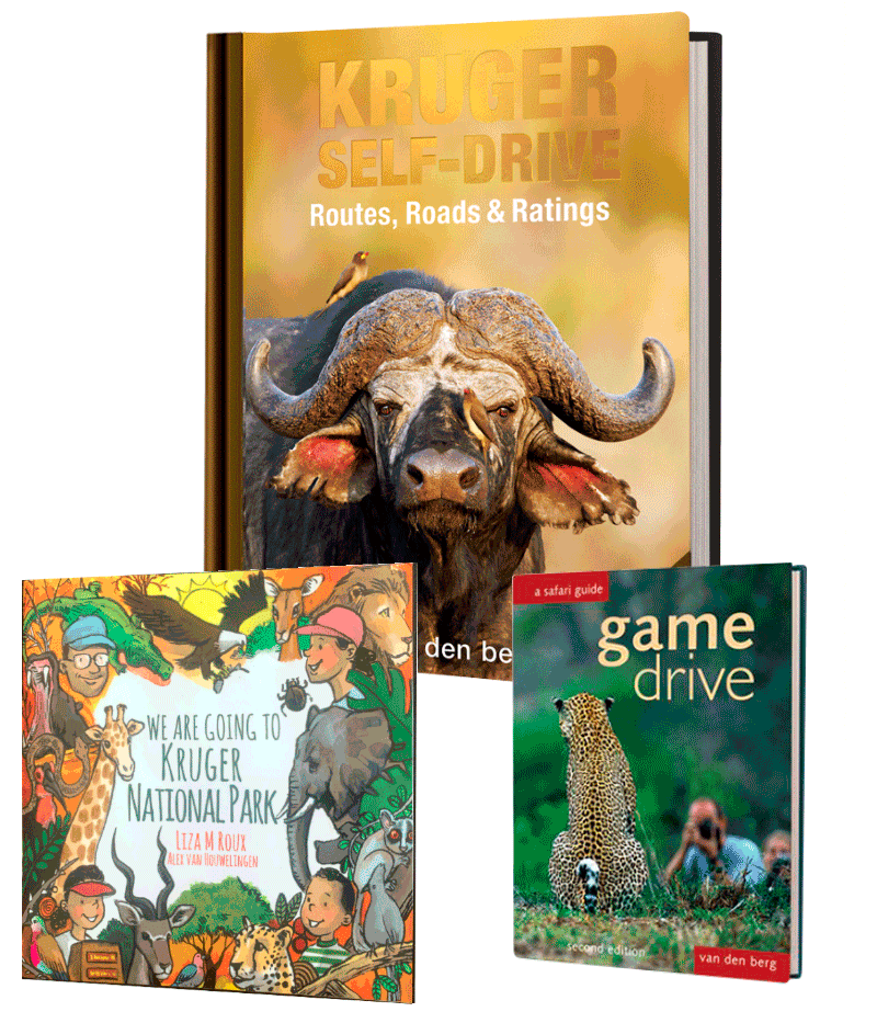 Kruger Family Bundle