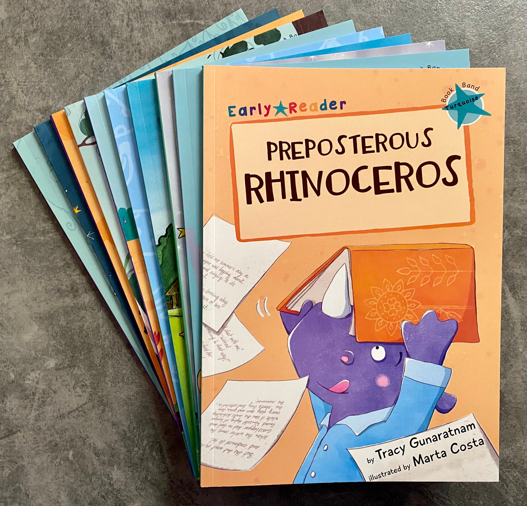 Early Readers Bundle - Fourth Level