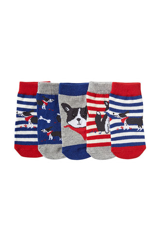 John Lewis Baby Dog Print Socks, Pack of 5
