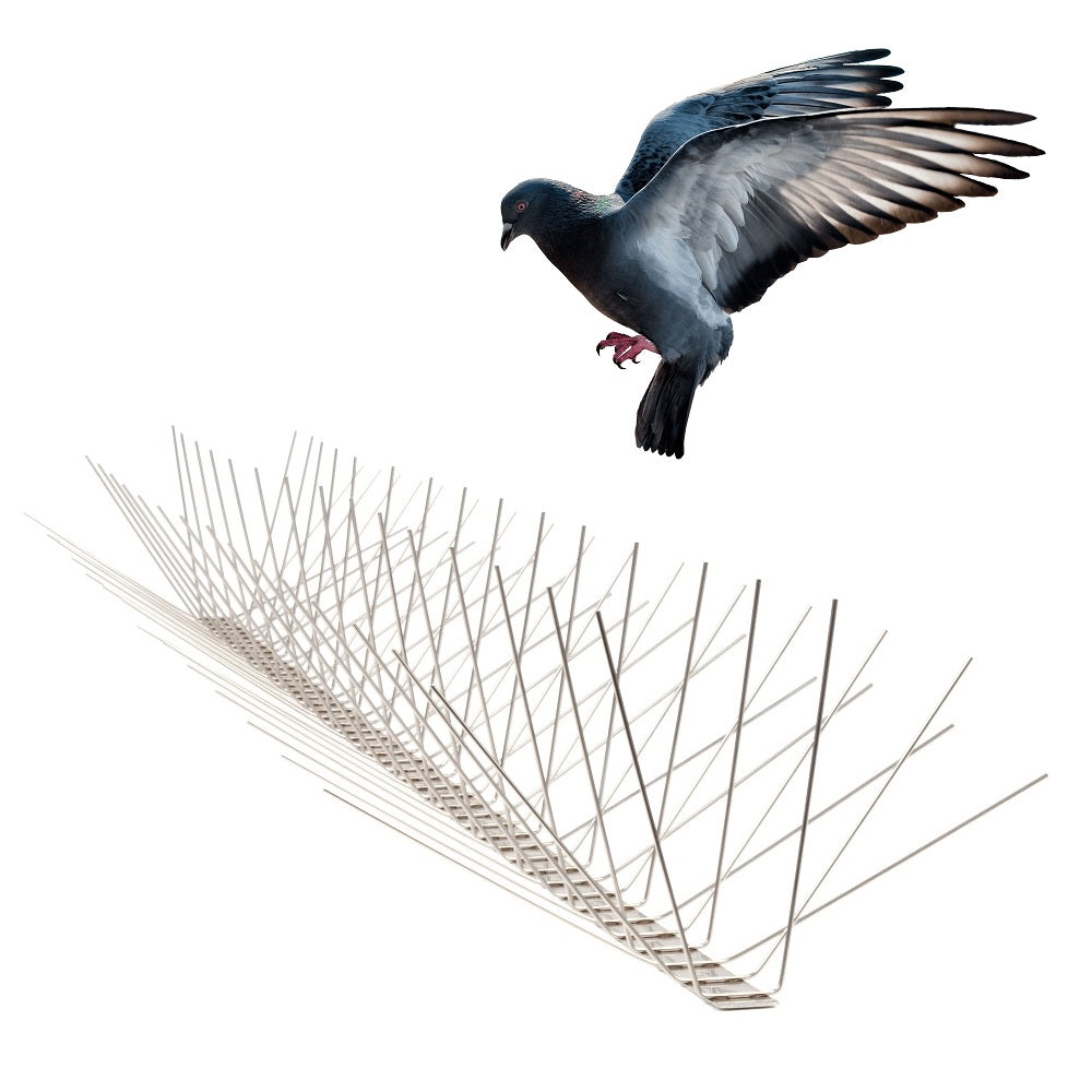Stainless Steel Bird Spikes - Built to last