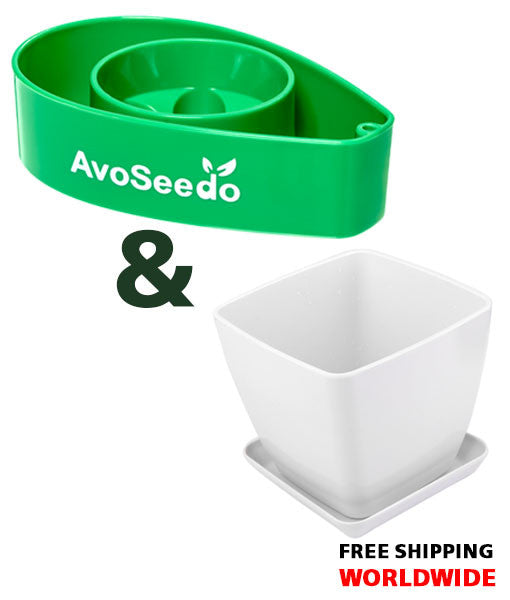 AvoSeedo Plant Pot Set