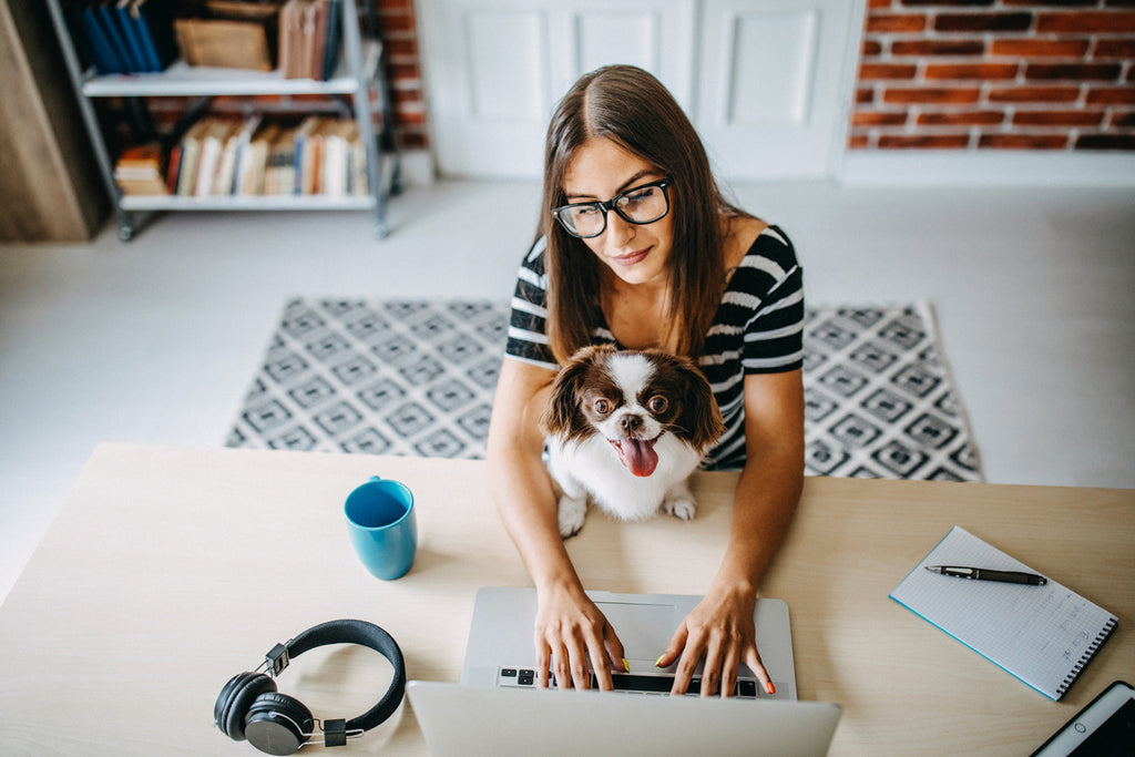 Babbel for Business Blog_Employee Benefits for remote working