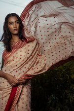 Mistress of Madder Saree