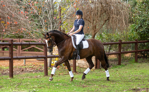 Dressage Towelling Wraps
