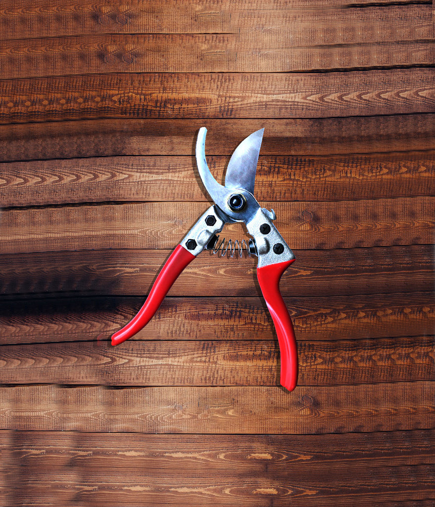 Razor Sharp Gardening Shears