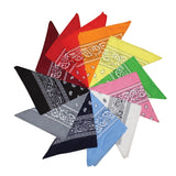 12 Pack of Assorted Bandanas